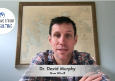 Dr. David Murphy - Now What?
